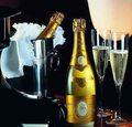 247.009. 36,8 kb. szampan... niskie węglowodany tj. do 26% wzrostu... glukoza naturalna... indeks  żywieniowy  tj. iż produktu....jpg