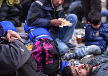 Opioła: Polskie służby nie są w stanie zweryfikować uchodźców. Najlepiej w ogóle ich nie przyjmować