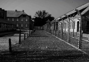 Robili remont mieszkania. Znaleźli dokumenty dotyczące Holocaustu węgierskich Żydów
