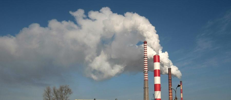 Z powodu zanieczyszczeń powietrza w ciągu roku w Europie przedwcześnie umiera ponad pół miliona ludzi. W Polsce jest to 47,3 tys. osób - wynika z raportu Europejskiej Agencji Środowiska. Pyły zawieszone mogą powodować lub pogłębiać choroby układu krążenia i płuc, zawały serca, zaburzenia rytmu serca i nowotwory.