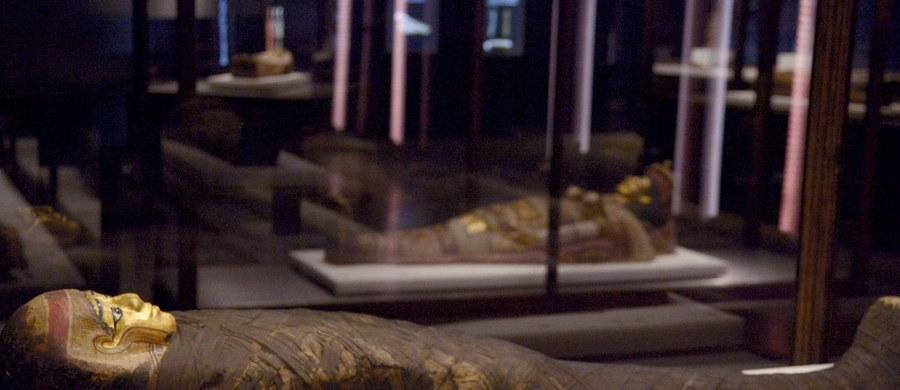 Muzeum Egipskie w Turynie jako pierwsze w Europie postanowiło ostrzegać zwiedzających, że w jego salach znajdują się szczątki ludzkie, czyli mumie. Powód – część gości boi się ich widoku.