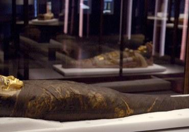 Muzeum będzie ostrzegać przed… mumiami