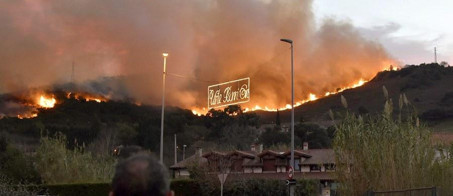 Hiszpańscy strażacy walczyli w poniedziałek ze 120 pożarami lasów na północy kraju w autonomicznych regionach Kantabrii i Asturii. W rejonach tych zima jeszcze nie nadeszła i dawno nie padały deszcze.