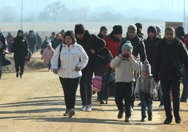 Kilkudziesięciu polskich pograniczników będzie pomagać Grekom radzić sobie z napływem imigrantów