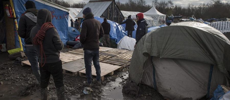 Ruch Kukiz'15 chce, aby Polacy w referendum wypowiedzieli się na temat przyjmowania uchodźców. Ruch zamierza złożyć projekt uchwały Sejmu w tej sprawie.