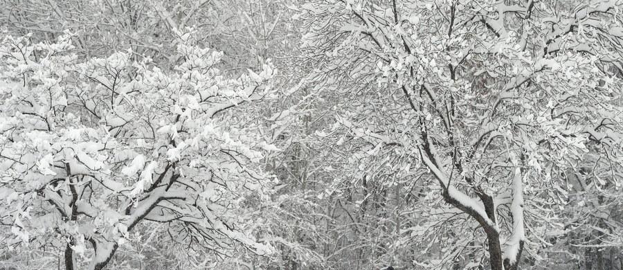 Setki miejscowości w Bułgarii zostały pozbawione prądu po obfitych opadach śniegu w ciągu ostatniej doby. Śnieg miejscami sięga metra i utrudnia ruch samochodowy i kolejowy. Na południowym wschodzie kraju w rejonie Smolianu pada deszcz i doszło do powodzi.
