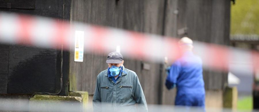 Francuscy rolnicy mają problem z epidemią ptasiej grypy. Według tamtejszych władz od listopada 2015 r. do połowy stycznia tego roku odnotowano 69 ognisk wirusa u drobiu. Wiele krajów wstrzymało import francuskiego mięsa.