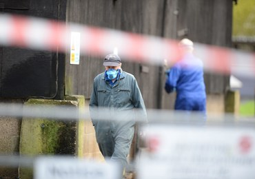 Ptasia grypa we Francji