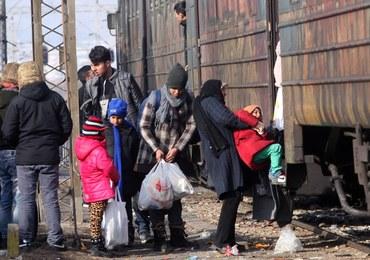 Potwierdzają się obawy Polski: 60 procent uchodźców to imigranci ekonomiczni