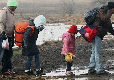 Szwecja wydali imigrantów. Mowa nawet o 80 tysiącach