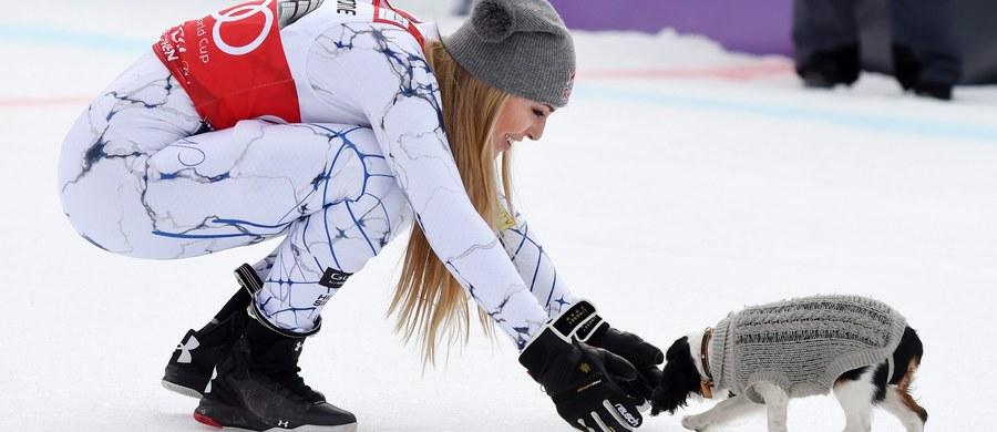 Lindsey Vonn, amerykańska narciarka alpejska, która wygrała ostatnio zjazd Pucharu Świata w Garmisch Partenkirchen, nie rozstaje się ze swoim pupilem, spanielką Lucy. Suczka towarzyszyła jej nawet podczas uroczystej dekoracji.