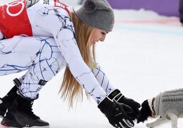 Spanielka Lucy wspiera amerykańską narciarkę Lindsey Vonn