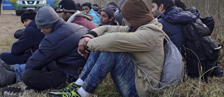 Państwo Islamskie wysłało w zeszłym roku do Europy znaczną grupę swoich bojowników. Ich zadaniem jest przeprowadzenie ataków terrorystycznych w kilku miastach europejskich na skalę tego z 13 listopada w Paryżu. Według CNN, chodzi o grupę 60 terrorystów, z czego 40 nadaj jest w ukryciu.