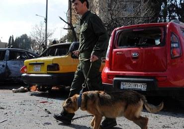 Rosja gotowa do rozmów o rozejmie w Syrii
