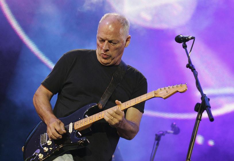 Internetowa celebrytka Zoella zrobiła zdjęcie Davidowi Gilmourowi i jego psu na plaży. Dziewczyna nie wiedziała jednak, że fotografuje znanego muzyka.