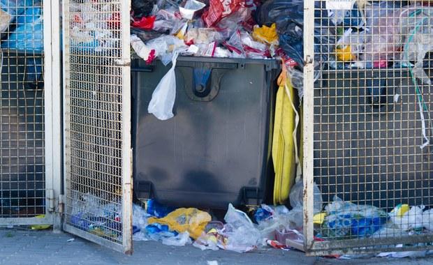 Dokumenty z danymi osobowymi odnalezione w śmietniku w Jeleniej Górze na Dolnym Śląsku. To informacja z Gorącej Linii RMF FM. O znalezisku policję zawiadomił przechodzień.