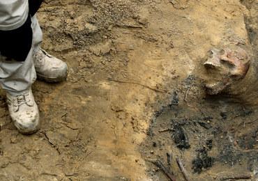 """Groby z """"Łączki"""" zostaną przeniesione. Wznowione zostaną poszukiwania ofiar stalinowskiego terroru"""