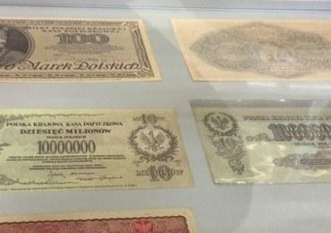 NBP: Na milion banknotów w obiegu, tylko 8 jest fałszywych. Polska waluta trudna do podrobienia