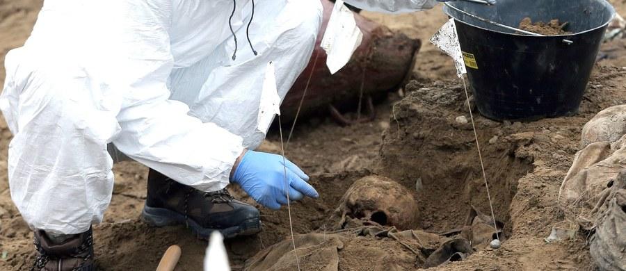 Nadal nie zidentyfikowano szczątków ponad 2 tys. osób spoczywających w masowych grobach w Kolumbii - poinformowała prokuratura w Bogocie. To ofiary trwającego od pół wieku konfliktu zbrojnego między lewicowymi ugrupowaniami partyzanckimi a władzami w Bogocie.