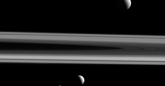 NASA opublikowała zdjęcie, na którym sondzie Cassini udało się uchwycić aż trzy z księżyców Saturna - Tetydę, Enceladusa i Mimasa. Widać na nim także fragment charakterystycznych, otaczających planetę pierścieni. Sonda wykonała to zdjęcie z pomocą kamery długoogniskowej 3 grudnia ubiegłego roku, pod kątem 0,4 stopnia względem płaszczyzny pierścieni.
