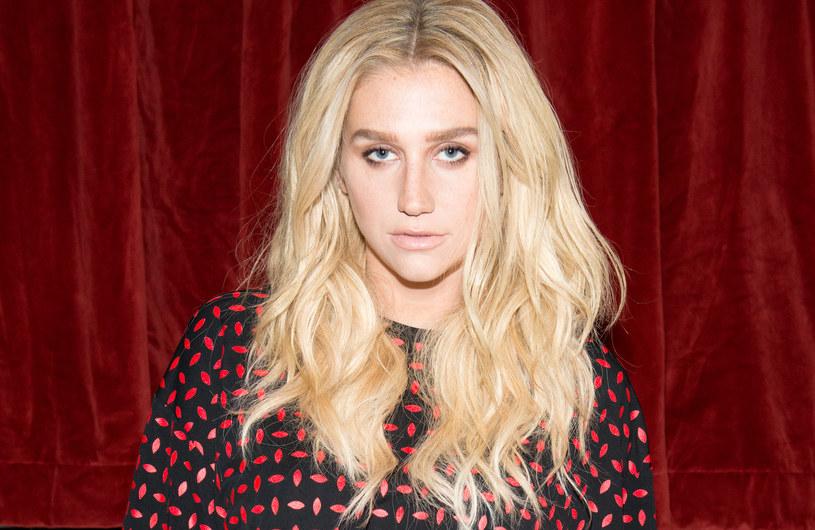 Kesha po raz pierwszy od ogłoszenia niekorzystnego dla niej werdyktu w sporze z menedżerem i producentem Dr. Luke'em zabrała głos. Na swoim Instagramie opublikowała zdjęcie oraz podziękowanie dla wszystkich, którzy zechcieli ją wesprzeć w tych trudnych chwilach.