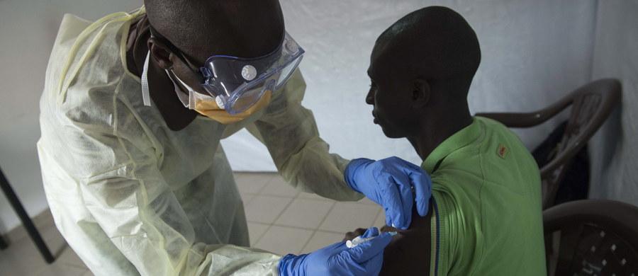 """Liczba ofiar śmiertelnych, związanych z epidemią wirusa Ebola w zachodniej Afryce, jest blisko dwukrotnie wyższa, niż wynika z oficjalnych danych - pisze na swej stronie internetowej czasopismo """"New Scientist"""". Taki wniosek płynie z wyników analizy przeprowadzonej przez naukowców z Yale School of Public Health. Ich zdaniem, dodatkowe ofiary wiązały się m.in. z przesunięciem na walkę z ebolą środków potrzebnych do ratowania chorych na malarię, gruźlicę czy zarażonych wirusem HIV."""