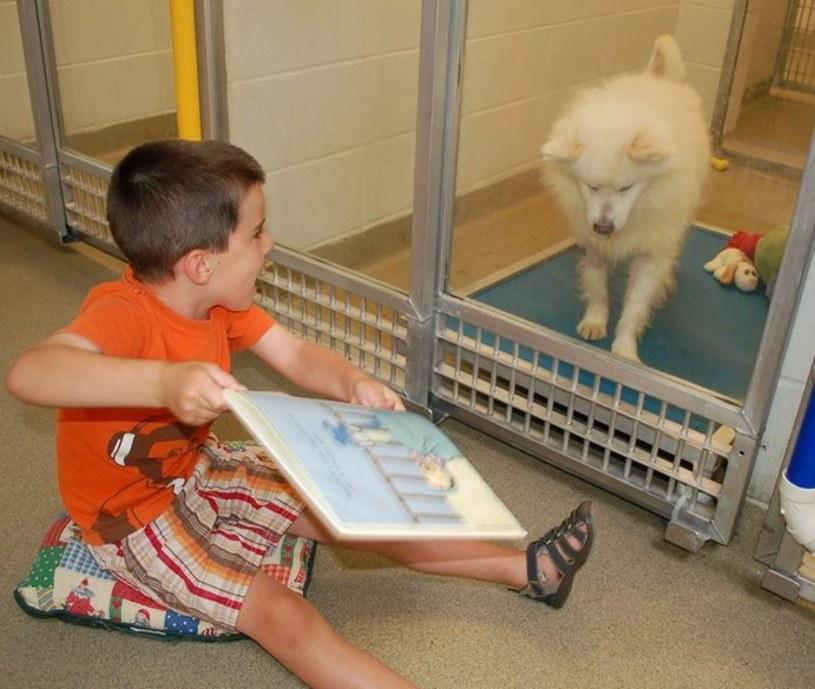 Władze schroniska dla bezdomnych zwierząt w Missouri wpadły na fantastyczny pomysł, w jaki sposób można pomagać znajdującym się w nim mieszkańcom. Do wszystkiego zaangażowały dzieci.