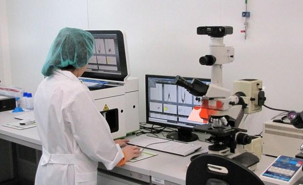 Dwóch tygodni potrzebują lekarze ze Uniwersyteckiego Szpitala Klinicznego we Wrocławiu, by przygotować komórki gleju węchowego do przeszczepu. Dzięki temu nowatorskiemu zabiegowi dwa lata temu mężczyzna z przerwanym rdzeniem kręgowym odzyskał czucie w nogach. Komórki przygotowuje w laboratoriach sześcioosobowy zespół.