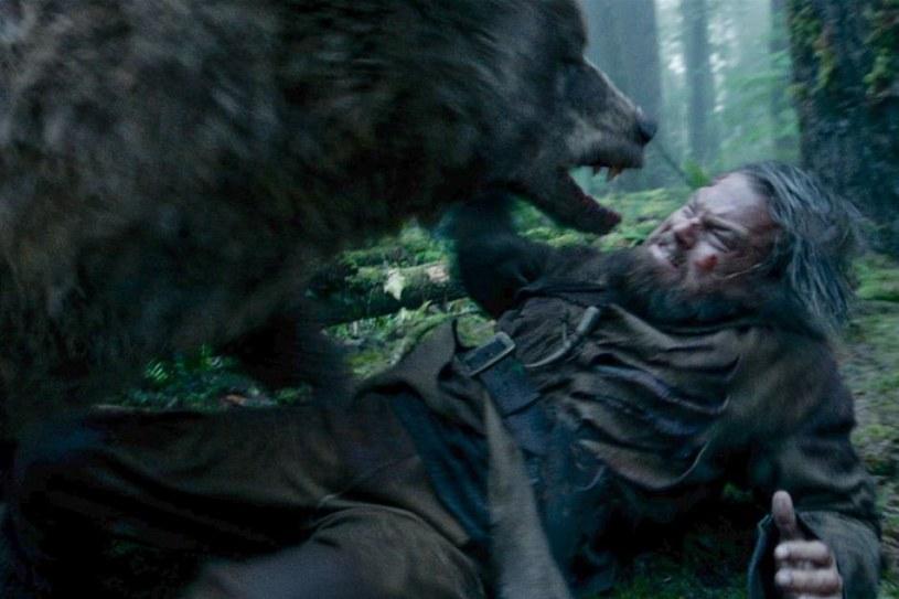 """Poznaliśmy listę nominowanych do filmowych nagród MTV. Szanse na statuetkę mają m.in. Will Smith (Wstrząs""""), para Dakota Johnson-Jamie Dornan (""""Pięćdziesiąt twarzy Greya"""") oraz ekranowy duet Leonardo DiCaprio z... niedźwiedziem (""""Zjawa"""")."""