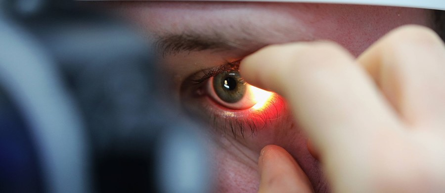 """Naukowcy z Cardiff University i Osaka University opracowali metodę przemiany ludzkich komórek macierzystych w komórki różnych tkanek oka i w badaniach na królikach udowodnili, że z jej pomocą można przywrócić wzrok. W najnowszym numerze czasopisma """"Nature"""" wyrażają nadzieję, że ten sposób, przypominający naturalny rozwój oka, w przyszłości potwierdzi swoją skuteczność w testach klinicznych."""