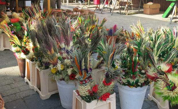 Kościół katolicki obchodzi dziś Niedzielę Palmową, na pamiątkę tryumfalnego wjazdu Chrystusa do Jerozolimy. Niedziela Palmowa jest zarazem początkiem Wielkiego Tygodnia i zapowiedzią zbliżających się Świąt Wielkanocnych. Nazwa tego dnia pochodzi od wprowadzonego w XI wieku zwyczaju święcenia palm. We wszystkich kościołach w Polsce odbędą się dziś uroczyste procesje, których uczestnicy nieść będą kolorowe palmy, przedtem poświęcone przez kapłanów.