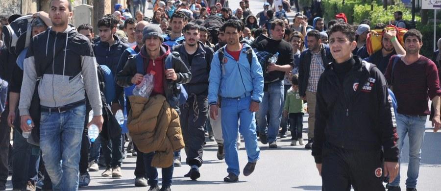 """Minister obrony Austrii Hans Peter Doskozil zapowiedział w wywiadzie dla dziennika """"Die Welt"""" wysłanie wojska do ochrony granic przed nielegalnymi imigrantami; zaproponował też utworzenie przez UE """"cywilno-wojskowej misji"""" w celu wsparcia Grecji."""