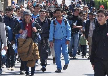 Austria chce wysłać wojsko do ochrony granicy przed imigrantami