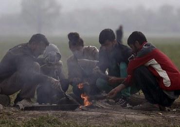 38 cudzoziemców dostało w Polsce status uchodźcy. Większość to Syryjczycy