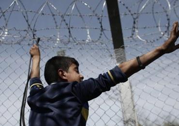 Austria chce postawić płoty na granicy z Węgrami