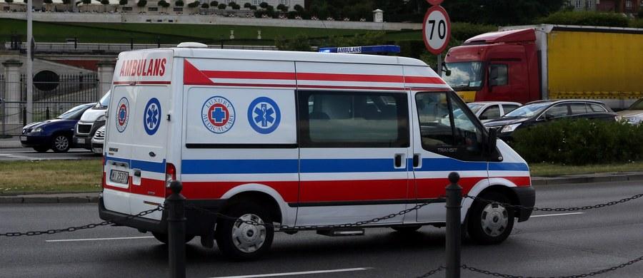 Policja z Tczewa wyjaśnia okoliczności dotkliwego pogryzienia 9-latki przez trzy psy. Za zgłoszenia, które otrzymali funkcjonariusze wynika, że dziecko w czwartek po południu jeździło rowerem po osiedlowej drodze w pobliżu swojego domu w Rokitkach (woj.pomorskie). To wtedy miały ją zaatakować zwierzęta.