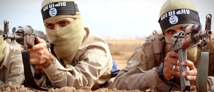 Państwo Islamskie po utraceniu części terytorium i instalacji naftowych poszukuje nowych źródeł dochodu. Środki zamierza pozyskać m.in. z przemytu antyków - poinformował ambasador Nowej Zelandii przy ONZ Gerard van Bohemen. Jak zaznaczył, samozwańczemu kalifatowi nie brakuje ani broni, ani chętnych do wstąpienia w jego szeregi.