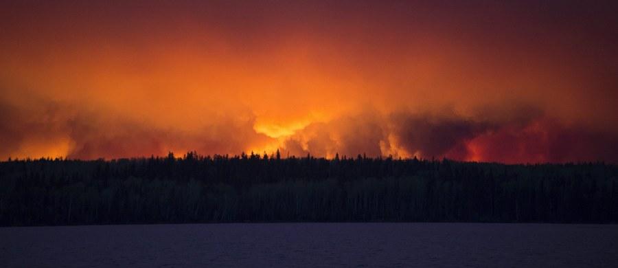 Mimo wysiłków strażaków pożary lasów w kanadyjskiej prowincji Alberta, podsycane przez gorący, suchy wiatr, rozszerzyły się i zagrażają już sąsiedniej prowincji Saskatchewan. Żywioł zmusił już do zamknięcia części instalacji na polach naftowych.