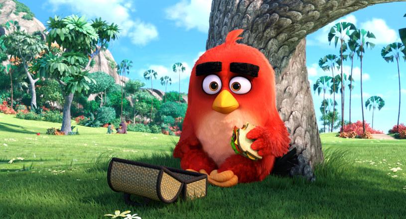 """W piątek, 27 maja, w ramach imprez towarzyszących Festiwalowi Muzyki Filmowej w Krakowie, odbędzie się specjalny pokaz filmu """"Angry Birds"""" - kinowej odsłony popularnej gry na telefony komórkowe. Po seansie odbędzie się spotkanie z kompozytorem muzyki do tej animacji - Heitorem Pereirą."""