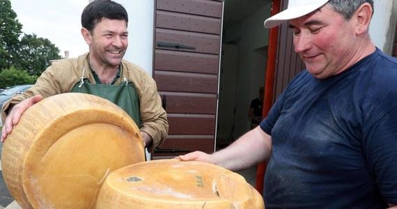 """Producenci włoskiego sera Grana Padano żądają odszkodowania od twórców """"Mody na sukces"""". Powód? Jeden z bohaterów tasiemcowego serialu źle się o nim wypowiada. Włosi twierdzą, że z powodu wysokiej oglądalności serialu ponieśli na świecie ogromne straty."""