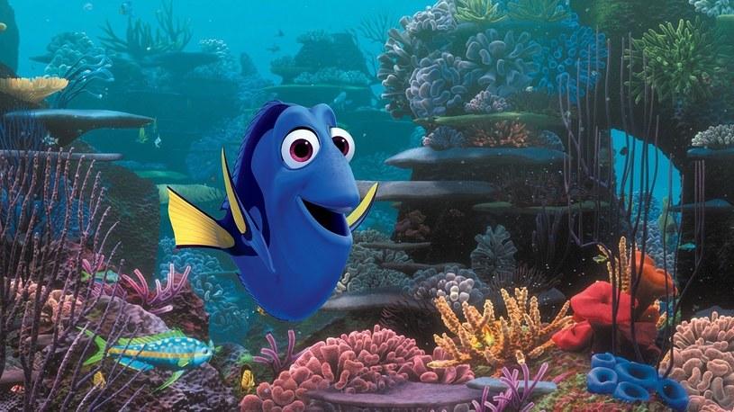 """Pamiętacie """"Gdzie jest Nemo"""", jedną z najlepszych animacji wszech czasów? Czas na nową, ekscytującą przygodę w morskich głębinach w towarzystwie starych przyjaciół! Tytułowa bohaterka najnowszej produkcji Disney/Pixar """"Gdzie jest Dory"""" wyruszy na poszukiwania swojej rodziny, ale także... samej siebie."""
