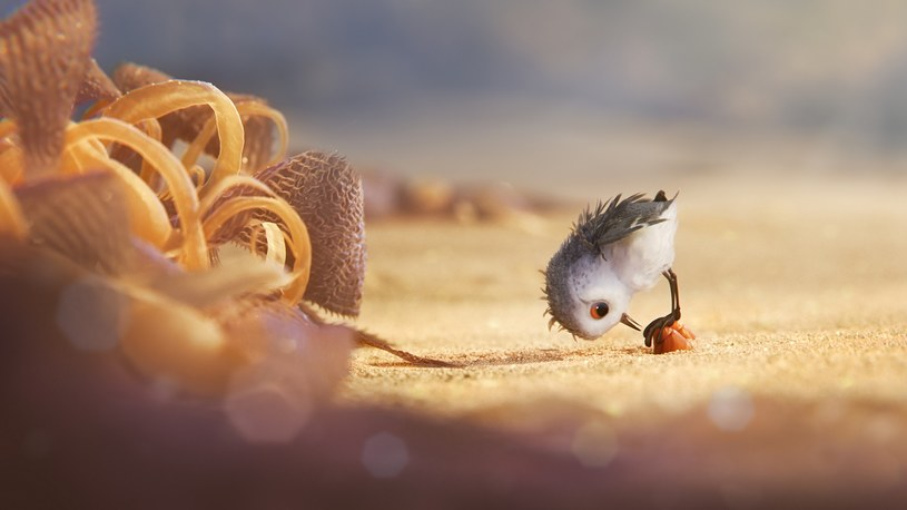 """W piątek 17 czerwca na ekranach kin pojawi się najnowsza animacja Disney/Pixar """"Gdzie jest Dory"""". Tradycyjnie przed filmem kultowego studia zobaczymy nową krótkometrażówkę. Tym razem będzie to """"Pisklak""""."""