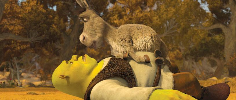 Świetna wiadomość dla fanów sympatycznego ogra i jego przyjaciół. To już oficjalne - Shrek powróci na ekrany kin w kolejnym filmie!