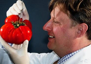 GMO w paszach będzie można stosować do 2021 roku