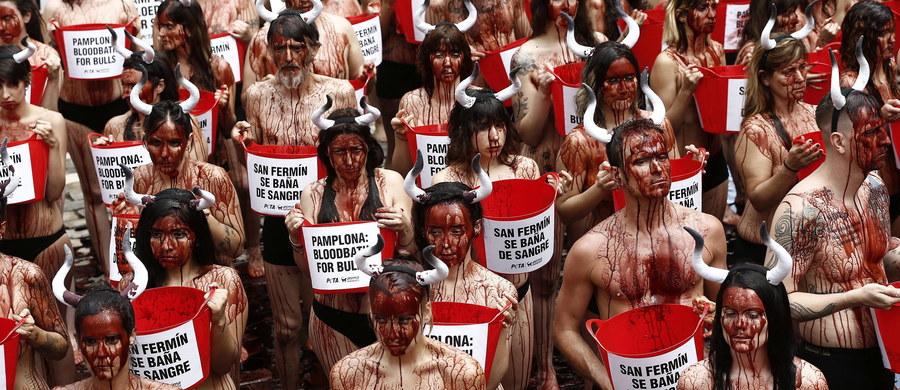W Pampelunie w północnej Hiszpanii rozpoczęła się 9-dniowa fiesta ku czci św. Fermina. Główną atrakcją są słynne gonitwy byków - pierwsza już jutro. W przeddzień imprezy przeciwko krwawej formie zabawy protestowali obrońcy praw zwierząt.