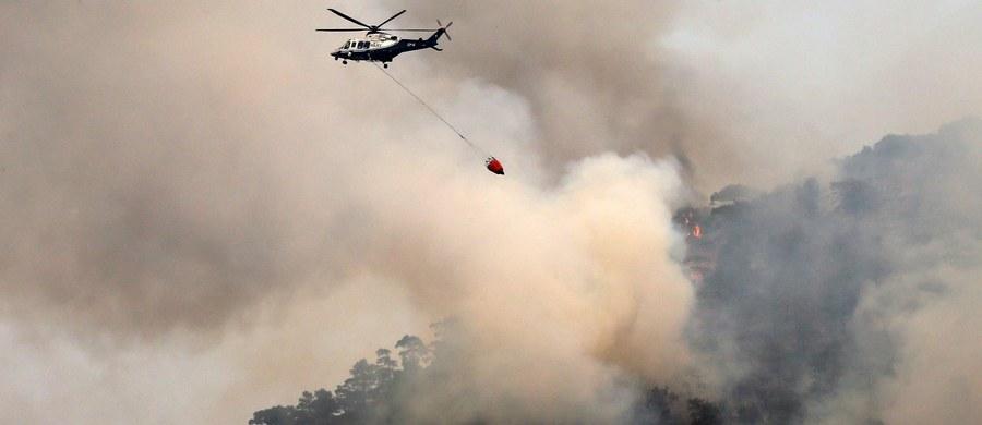 Na południu Francji szaleją pożary. Ewakuowano ponad 3 tys. osób z kempingów, którym w gminie Torreilles zagrażał pożar - podały w czwartek władze w regionie Langwedocja-Roussillon-Midi-Pireneje. W wypadku wozu jadącego do pożaru zginął zawodowy strażak.
