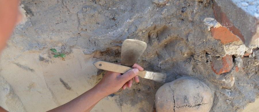 14 szkieletów ludzkich odnaleziono podczas prac ekshumacyjnych w Jaworniku Ruskim koło Przemyśla. Są to prawdopodobnie ofiary ukraińskich nacjonalistów z lat 40. ubiegłego wieku. Ekshumacja była elementem śledztwa prowadzonego przez pion śledczy IPN w Rzeszowie.