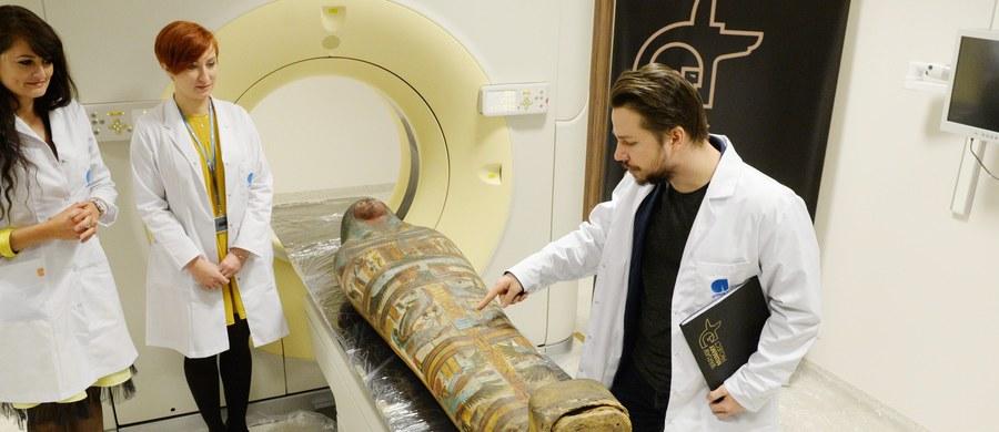 Mumia kapłana Hor-Dżehutiego, która znajduje się w Muzeum Narodowym w Warszawie, kryje pod zwojami bandaży ciało kobiety. O nietypowym znalezisku polscy naukowcy poinformowali w czwartek w czasie Światowego Kongresu Badań nad Mumiami w Limie w Peru.