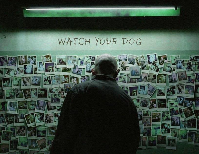 """Krótkometrażowy film fabularny """"Hycel"""" w reżyserii Darii Woszek wygrał Rhode Island International Film Festival. Dzięki tej nagrodzie polski obraz może się ubiegać o nominację do Oscara w kategorii Najlepszy Film Krótkometrażowy."""