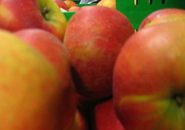 Polskie jabłka zatrzymane przez rosyjskie służby w rejonie Smoleńska